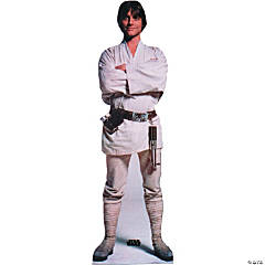Luke Skywalker Stand-Up