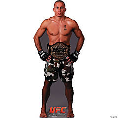 UFC - Georges St. Pierre Stand-Up