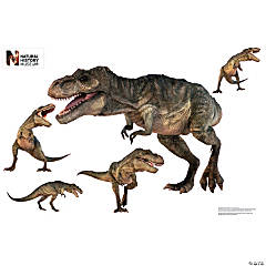 T. Rex Assortment Dinosaur Wall Jammer™