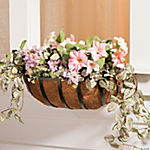 Oblong Coconut Husk Lined Window Planter