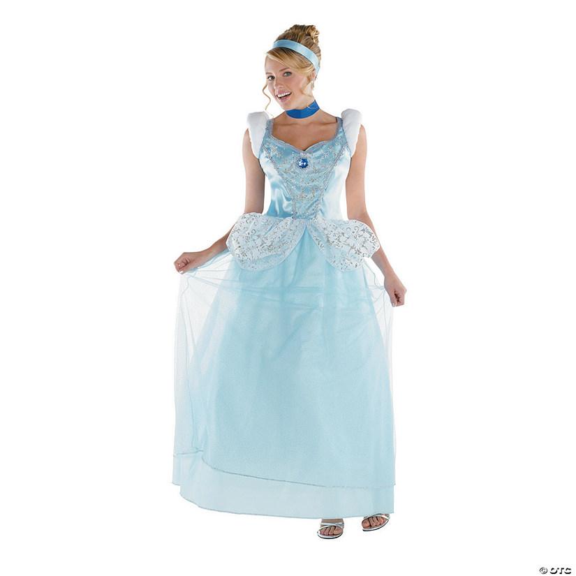 Womens Plus Size Deluxe Cinderella Costume