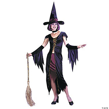 Witchy Witch Standard Adult Women's Costume