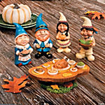 Pilgrim & Native American Gnomes Feast