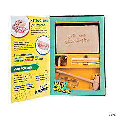 Large Fish Fossil Excavation Kit