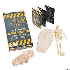 Dig & Discover Human Skeleton Excavation Kit