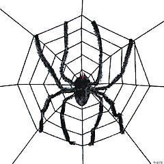 Spider Web With Spider