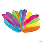 Neon Feather Assortment