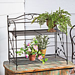 Black Vine Plant Shelf