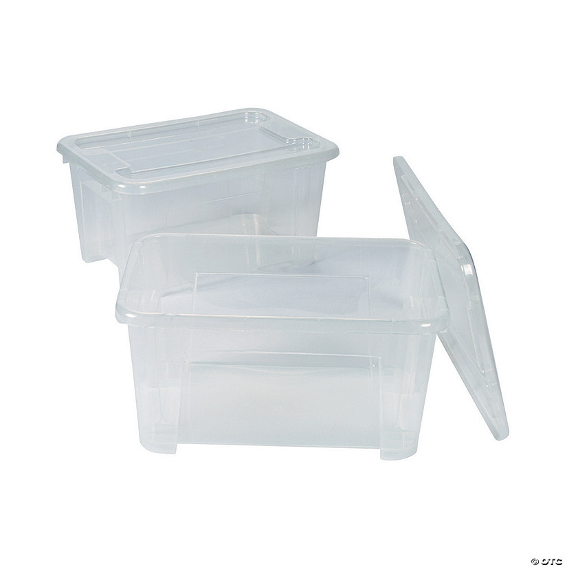 Awesome Clear Storage Bins With Lids