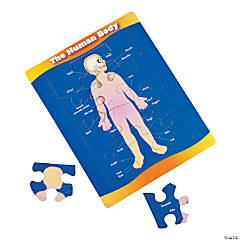 Human Body Reveal Puzzles