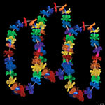Light-Up Rainbow Flower Leis