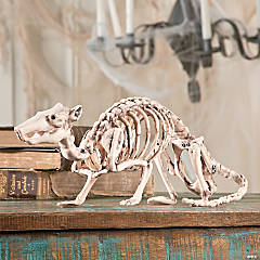 Halloween Skeleton Rat