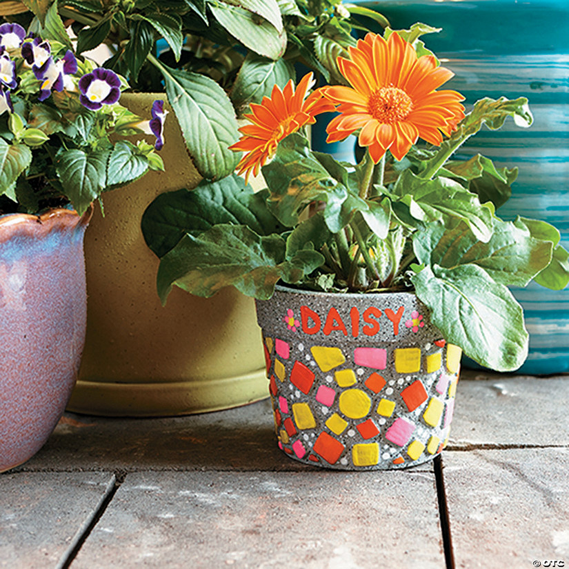 Paint Your Own Stone: Mosaic Flower Pot