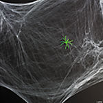 Stretchable Spiderwebs With Glow-In-The-Dark Spider