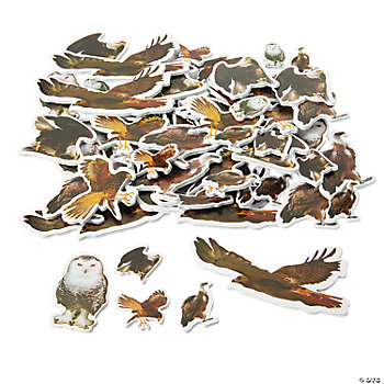 Self-Adhesive Realistic Wild Bird Shapes
