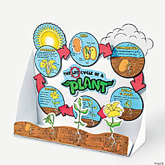 Color Your Own Plant Life Cycle Dioramas