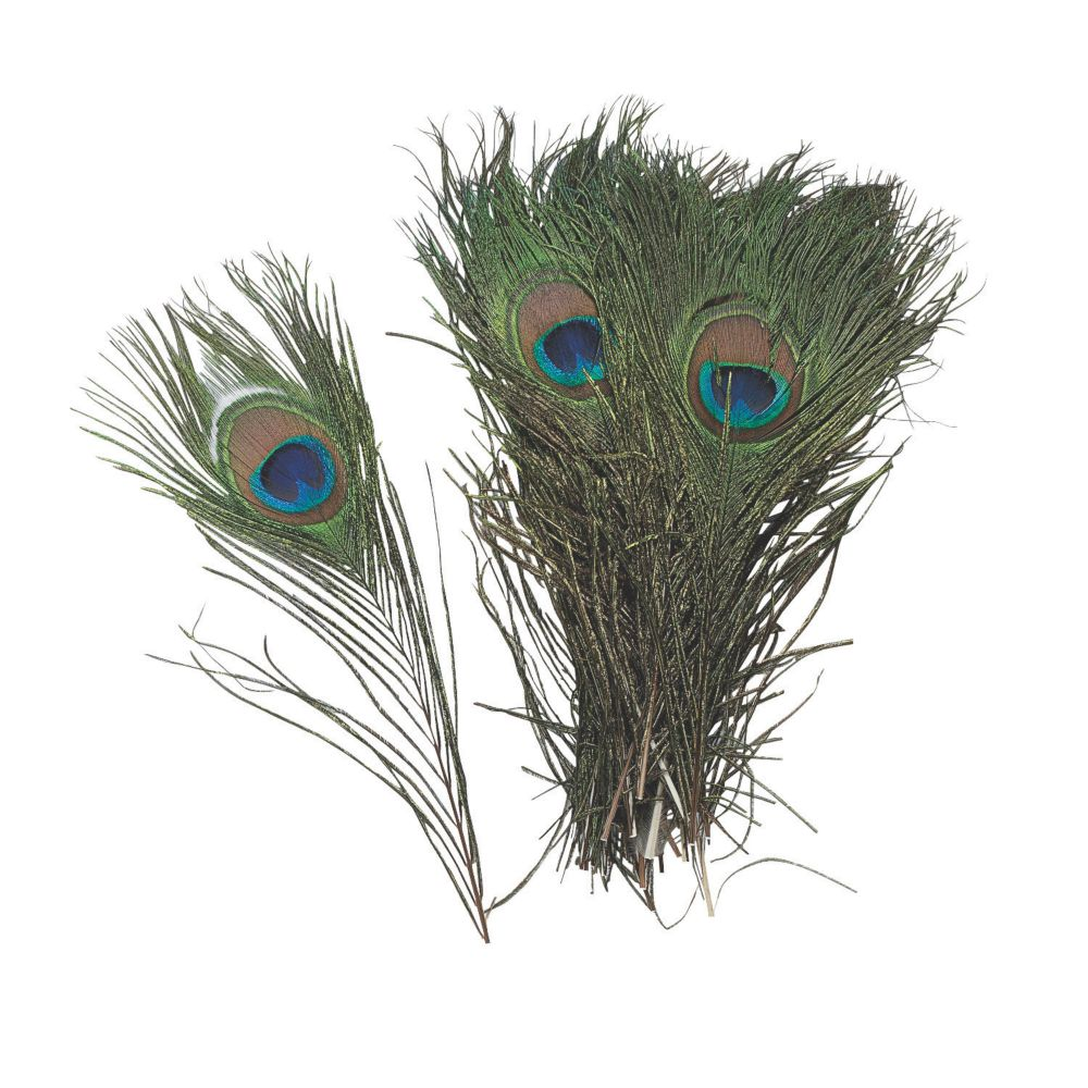 Natural peacock feathers adult crafts diy accessories for Peacock crafts for adults