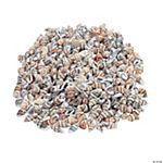 Natural Shell Bead Assortment - 3/4