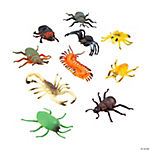 10 Just Buggy Bugs & Spiders