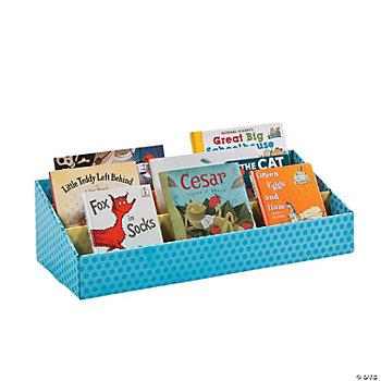 Classroom Storage Shelf
