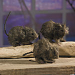 3 Realistic Hairy Rats