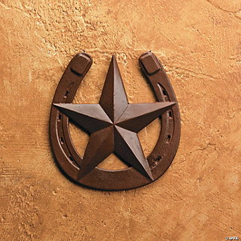 Rustic Horseshoe with Barn Star