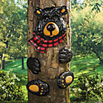 Black Bear Tree Hugger