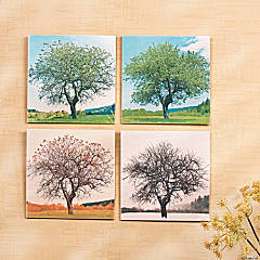 Changing Seasons Wall Décor