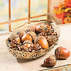 Pinecones & Acorns