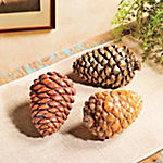 Pinecone Decorations