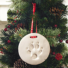 Deluxe Dog Paw Print Ornament Kit