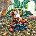 """Nuts About America"" Squirrel"