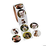 Cat Photo Roll of Stickers