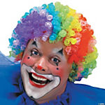7 Color Clown Wig