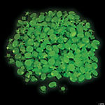 Glow-in-the-Dark Self-Adhesive Jewels