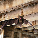 Moving Bat with Wings