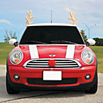 Plush Red-Nosed Reindeer Car Decorating Kit