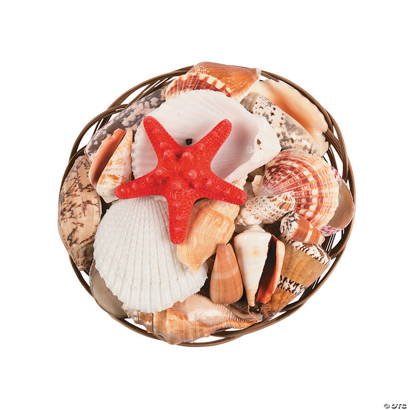"8"" Coco Midrib Basket Sea Shell Mix"