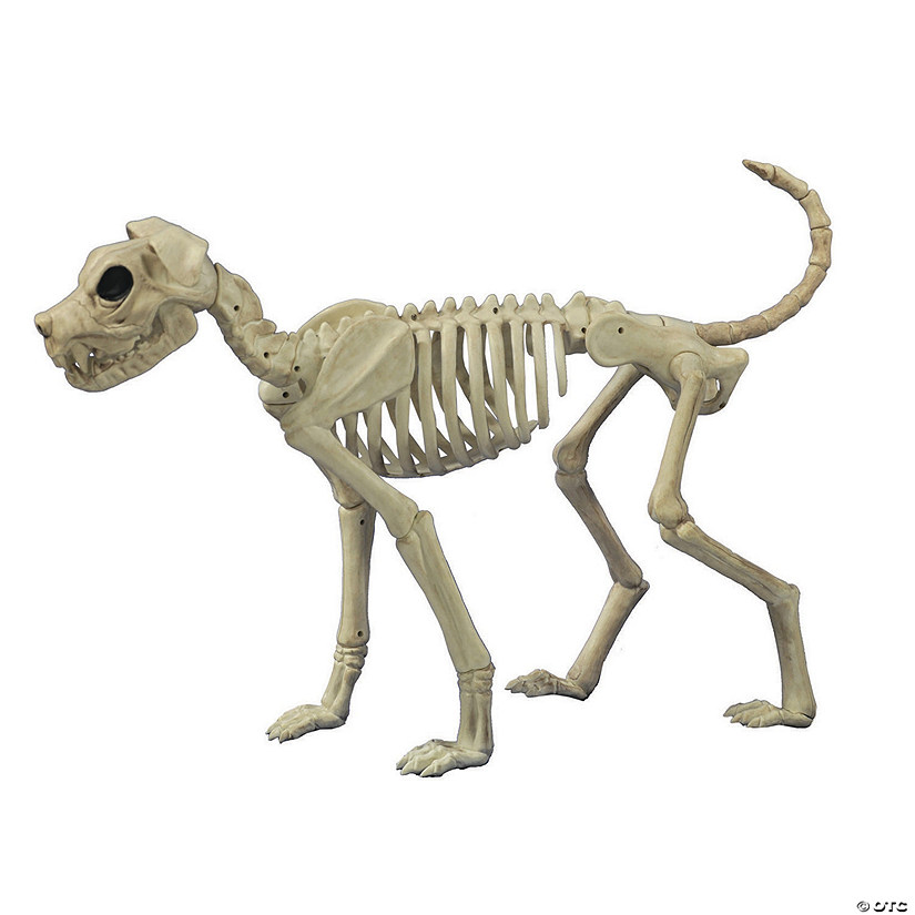 Buster Bonez Dog Skeleton