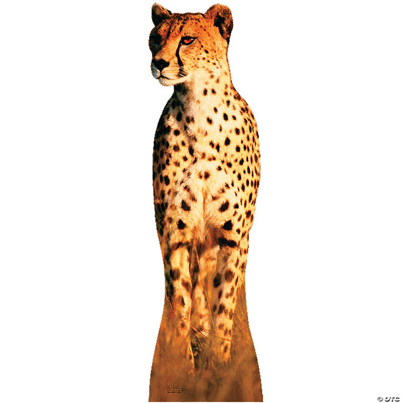 Cheetah Cardboard Stand-Up