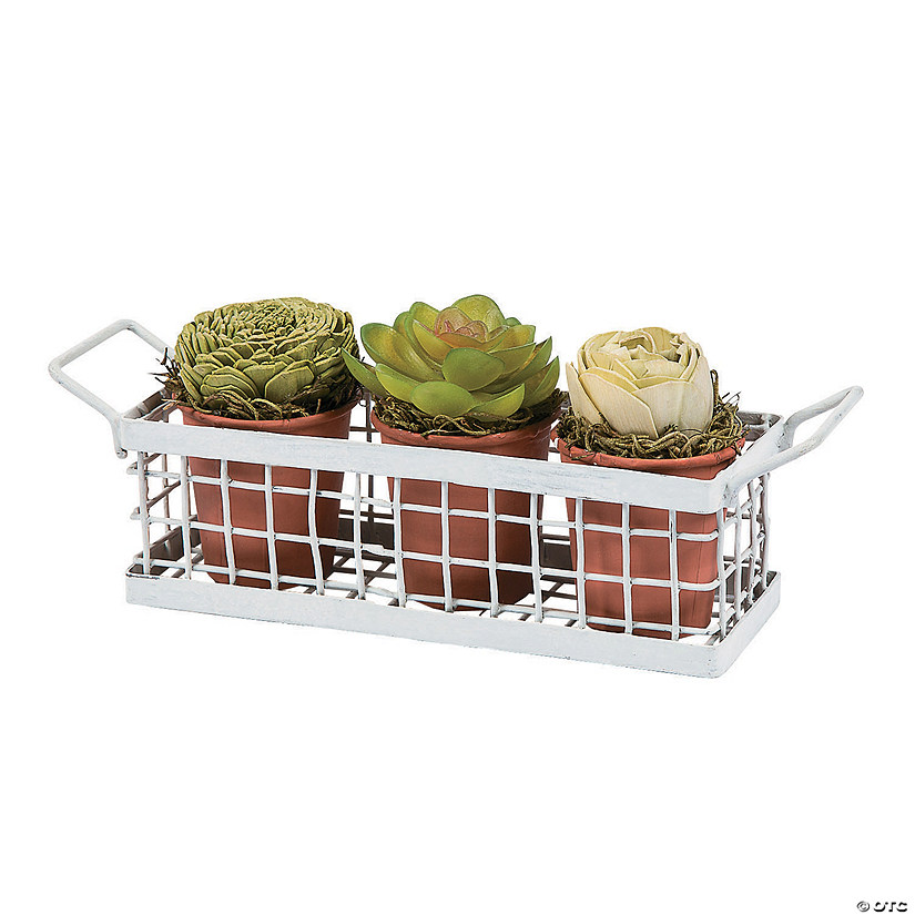 Faux Potted Succulents in Crate