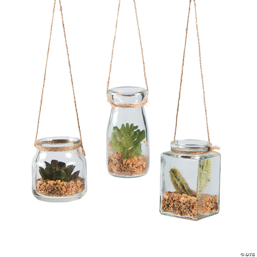 Hanging Jars with Succulents