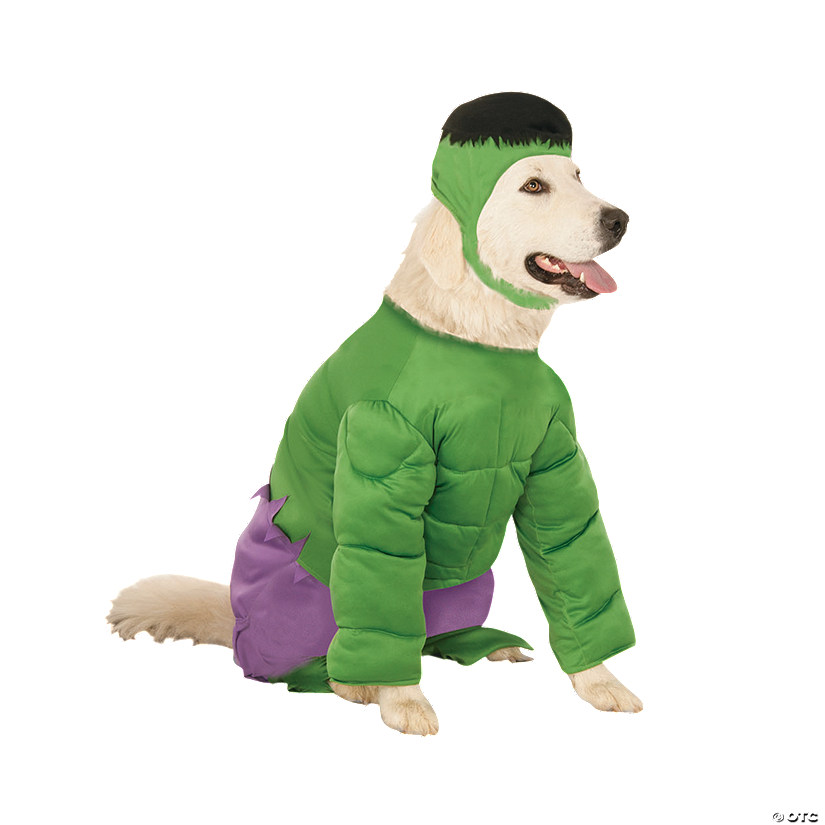 Hulk Dog Costume