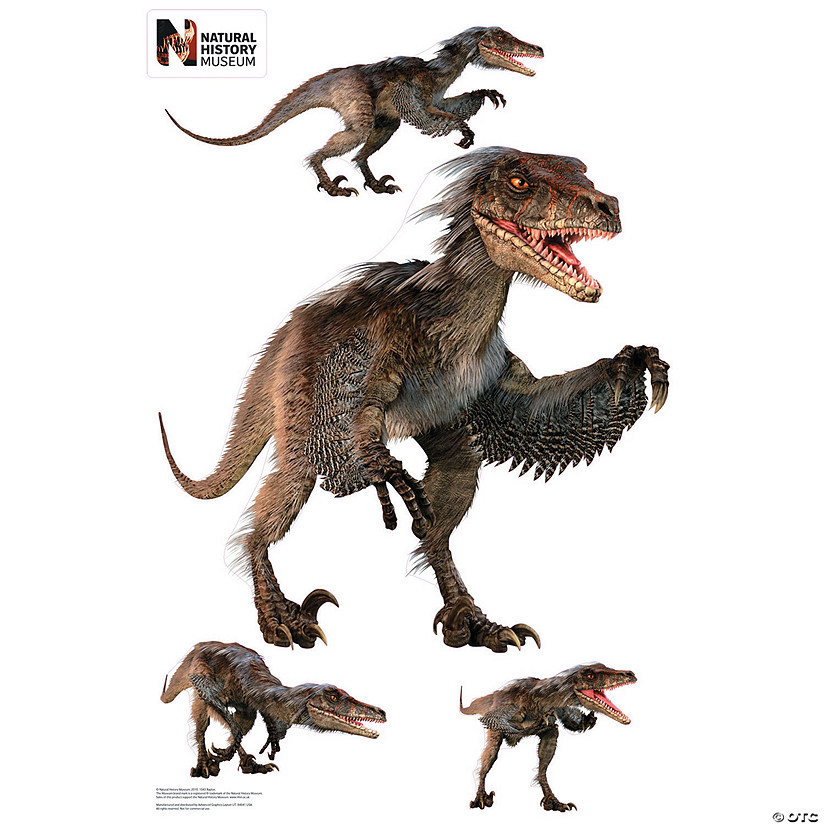 Raptor  Layout Wall Jammer™ Wall Decal