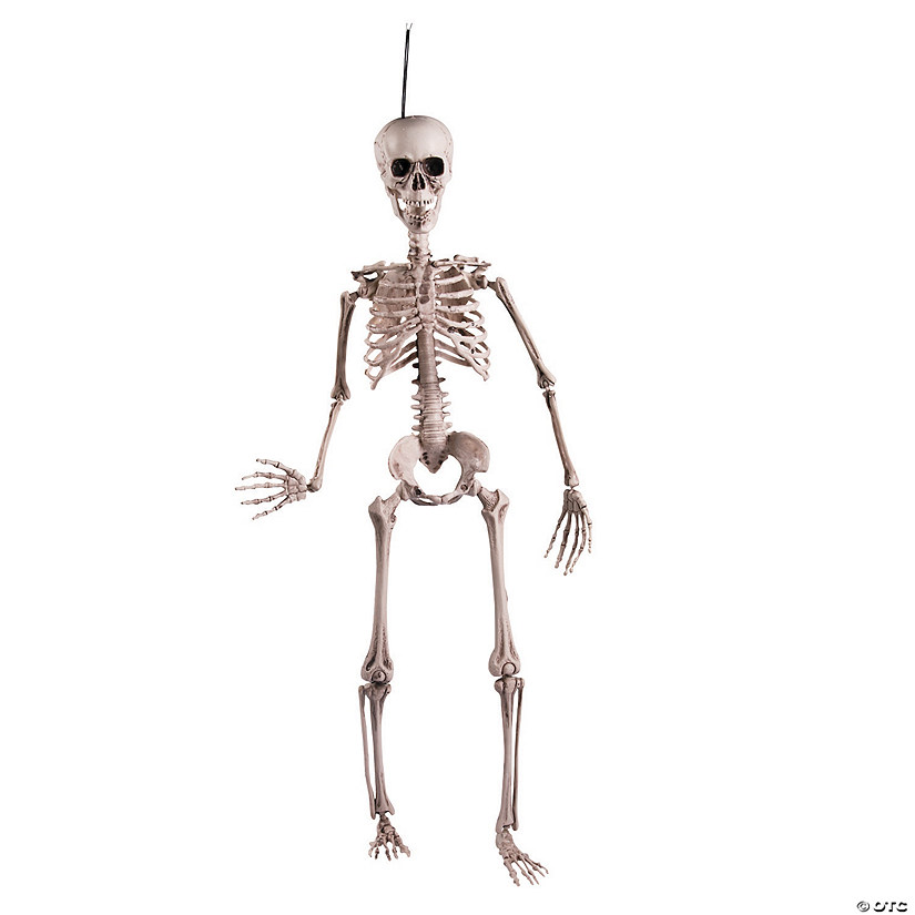Rugged Posable Skeleton Halloween Décor