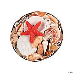 """8"""" Coco Midrib Basket Sea Shell Mix"""