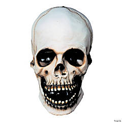 Adult's Skull Halloween Mask