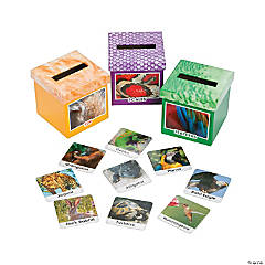 Animal Attributes Sorting Boxes