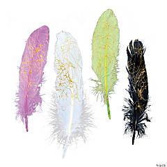 Dazzling Feather Assortment