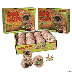 DIG IT UP! Big Bugs: Set of 3